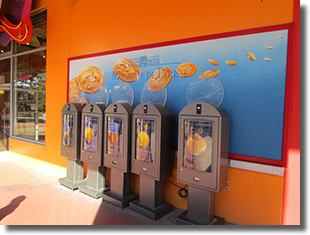 Disneyland Resort Paris Medallion Machine Photo
